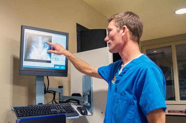 Radiology Technician online computer classes college credit